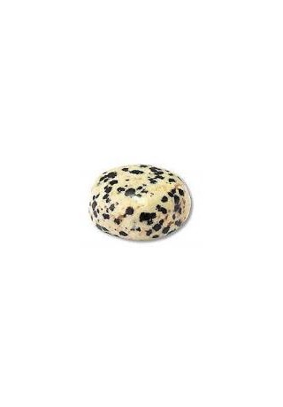 Choker Amanda - Japse dalmatien